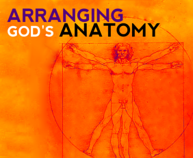 Arranging God's Anatomy